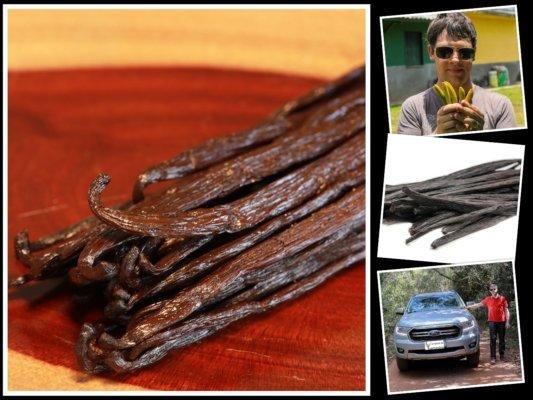 Gousse de vanille bourbon noire de Madagascar au kilo